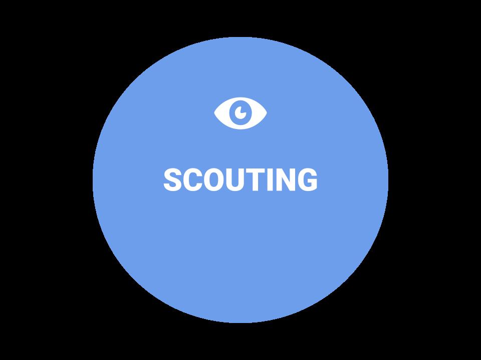Scouting Icon